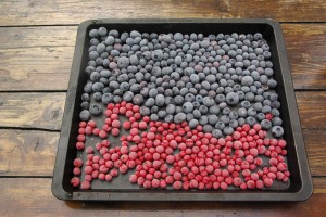 sharingourfoodadventures.com Our Blueberries & Redcurrants to freeze