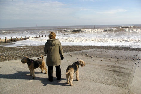 Magnificent and Scary - the waves pounding the Hornsea shore.