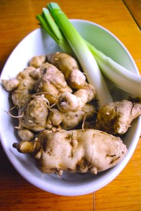 Our Jerusalem Artichokes & Leeks